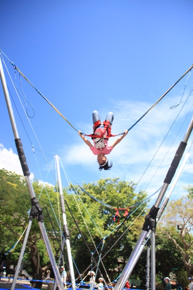 bungee_up